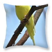 Adorable Little Yellow Parakeet In A Tree Throw Pillow