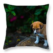 Adorable Throw Pillow