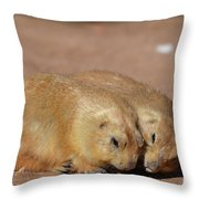 Adorable Pair Of Prairie Dogs Cuddling Together Throw Pillow