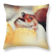 Adorable Tiny Hamster Pet Feasting On Corn Throw Pillow