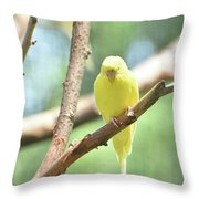 Adorable Yellow Budgie Parakeet Relaxing In A Tree Throw Pillow