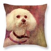 Adoration - Portrait Of A Bichon Frise  Throw Pillow