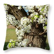 Adorned With Beauty Throw Pillow