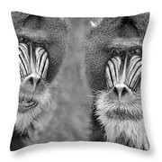 Adult Male Mandrills Black And White Version Throw Pillow