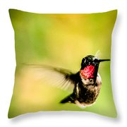 Adult Male Ruby-throated Hummingbird Throw Pillow
