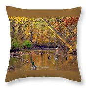 Adventure And Discovery Throw Pillow