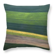 Aerial Abstract Throw Pillow