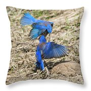 Aerial Assault Throw Pillow