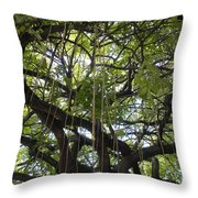 Aerial Network I Throw Pillow