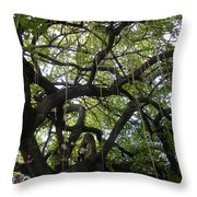 Aerial Network II Throw Pillow