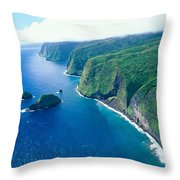 Aerial Of North Shore Throw Pillow