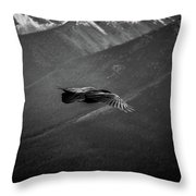 Aerial Predator Over Banff Throw Pillow