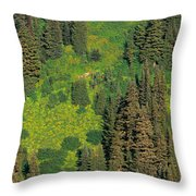 Aerial View Of Forest On Mountainside Throw Pillow