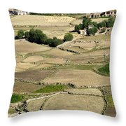 Aerial View Of Green Ladakh Agricultural  Landscape Throw Pillow
