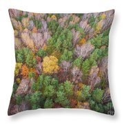 Aerial View Of The Forrest With Different Color Trees.  Throw Pillow
