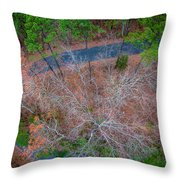 Aerial View Over Wooded Forest And Road Throw Pillow