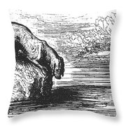Aesop: Dog & His Shadow Throw Pillow