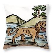 Aesop: Dog & Shadow, 1484 Throw Pillow