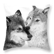 Affection Of Wolves Throw Pillow