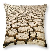 Africa Cracked Mud Throw Pillow