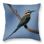 African Bee Eater Throw Pillow