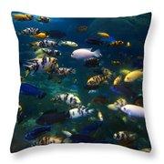 African Cichlids 2 Throw Pillow