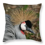 African Crowned Crane #8 Throw Pillow