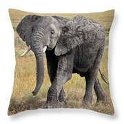 African Elephant Happy And Free Throw Pillow