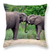 African Elephants Interacting Throw Pillow