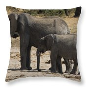 African Elephants Mother And Baby Throw Pillow
