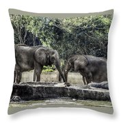 African Elephants_hdr Throw Pillow