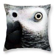 African Gray Parrot Art - Softy Throw Pillow