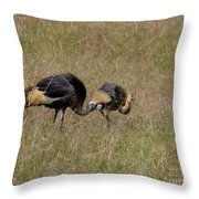 African Grey Crowned  Crane With Chick Throw Pillow