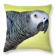 African Grey Throw Pillow
