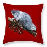 African Grey Parrot A Throw Pillow