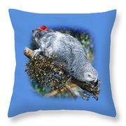 African Grey Parrot A1 Throw Pillow