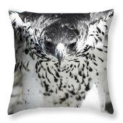 African Hawk Eagle 2 Throw Pillow