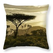 African Interlude Throw Pillow