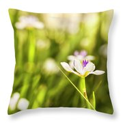 African Iris Bokeh Throw Pillow