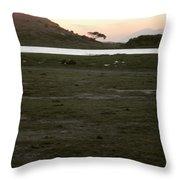 African Lake Throw Pillow
