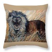 African Lion 2 Throw Pillow
