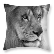 African Lion #8 Black And White Throw Pillow
