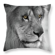 African Lion #8 Black And White  T O C Throw Pillow