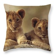 African Lion Cubs Resting On A Rock Throw Pillow