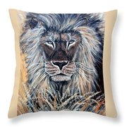 African Lion Throw Pillow