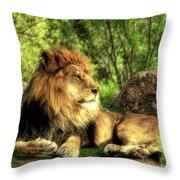 African Lion  Throw Pillow