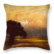 African Memories  Throw Pillow