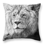 African Nobility - Lion Throw Pillow