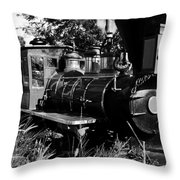 African Rail Throw Pillow