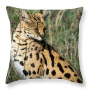 African Serval In Ngorongoro Conservation Area Throw Pillow
